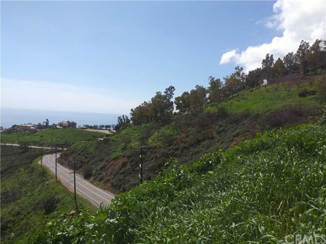 4300 Latigo Canyon Rd - Photo 1