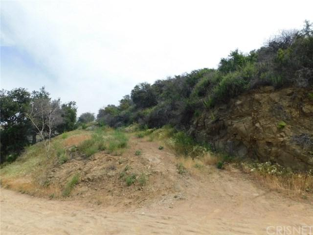 1550 Penny Road, Topanga, CA 90290 (#SR19083866) :: Kim Meeker Realty Group