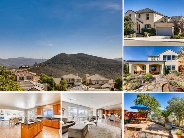 729 Hollowbrook Court, San Marcos, CA 92078 (#190020371) :: eXp Realty of California Inc.