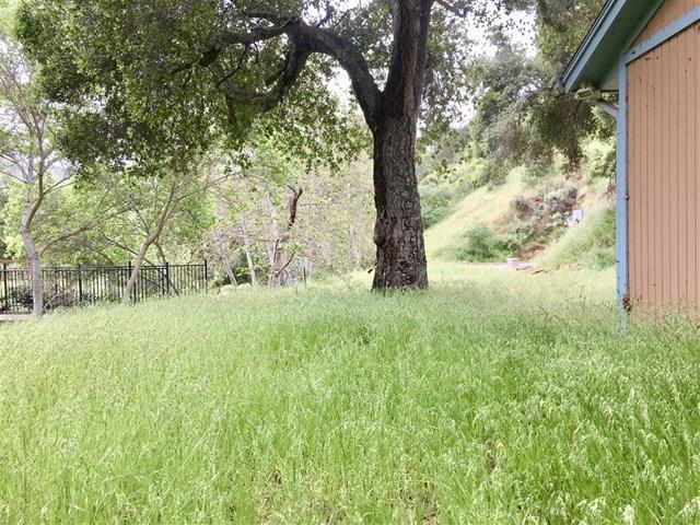 214 Frances Dr., El Cajon, CA 92019 (#190020698) :: Mainstreet Realtors®