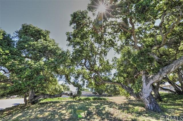 0 El Camino Real, Arroyo Grande, CA 94403 (#PI19087493) :: Nest Central Coast