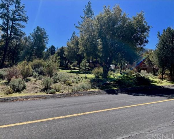 16220 Askin Drive, Pine Mountain Club, CA 93222 (#SR19087530) :: eXp Realty of California Inc.