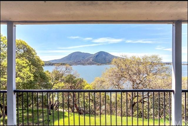 10327 Terrace Drive, Clearlake Oaks, CA 95423 (#LC19087807) :: Kim Meeker Realty Group