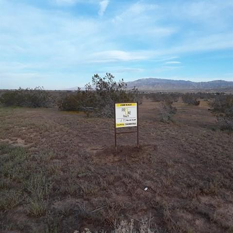 0 Sandia Road, Apple Valley, CA 92308 (#512380) :: The Danae Aballi Team