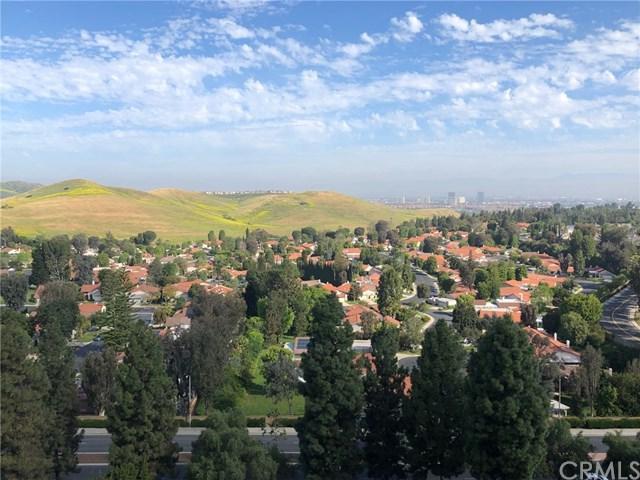 24055 Paseo Del Lago #1011, Laguna Woods, CA 92637 (#OC19091070) :: Heller The Home Seller