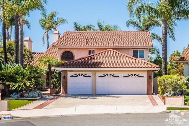 23981 Swallowtail Drive, Laguna Niguel, CA 92677 (#219011771DA) :: Legacy 15 Real Estate Brokers