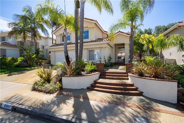 891 S Parkglen Place, Anaheim Hills, CA 92808 (#PW19086445) :: Ardent Real Estate Group, Inc.