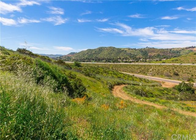 1422 Panky Road, Fallbrook, CA  (#OC19080533) :: Hometown Veterans
