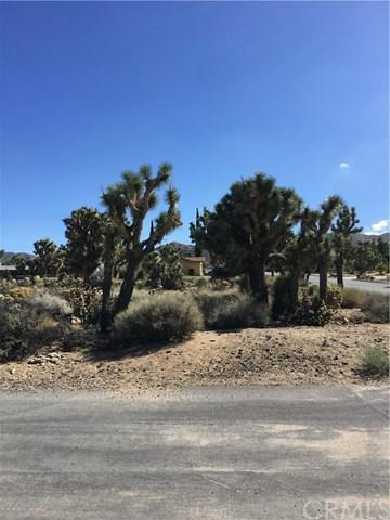0 Grand Drive, Yucca Valley, CA 92284 (#JT19094533) :: Kim Meeker Realty Group