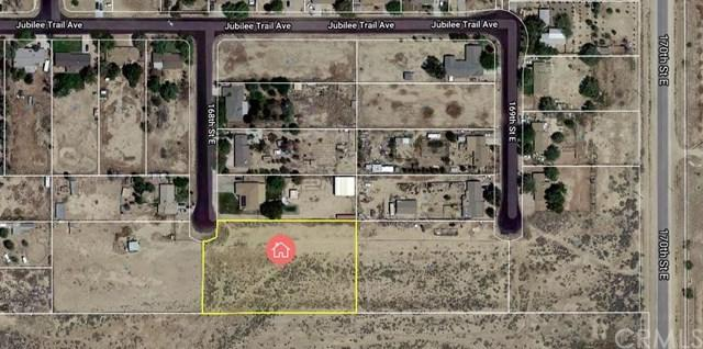 39114 168th Street, Palmdale, CA 93591 (#PW19087865) :: Beachside Realty
