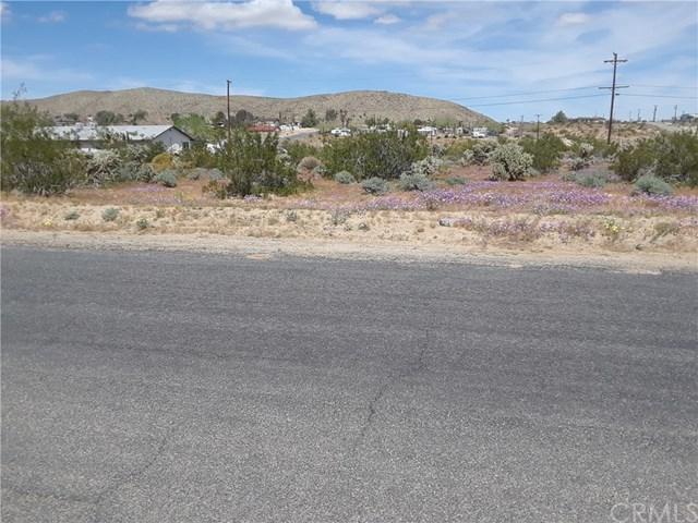 2 Verbena Road, Joshua Tree, CA 92252 (#JT19095696) :: RE/MAX Masters