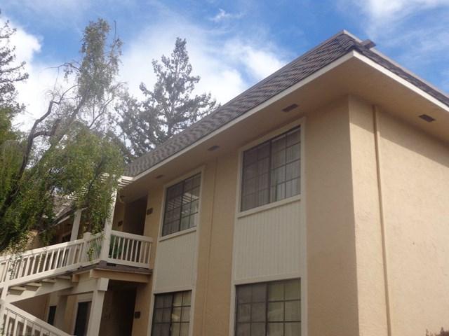 5373 Cribari, San Jose, CA 95135 (#ML81749736) :: Fred Sed Group