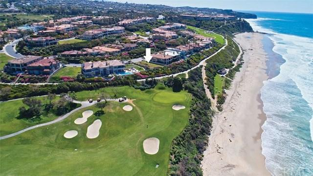 6 Ritz Cove Drive, Dana Point, CA 92629 (#NP19101923) :: Hart Coastal Group
