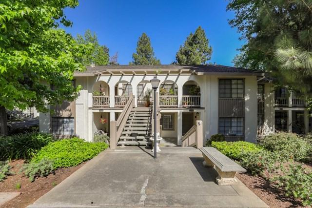 5242 Cribari, San Jose, CA 95135 (#ML81750100) :: Fred Sed Group