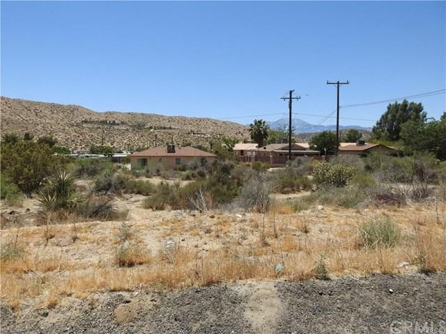 0 Senilis Avenue, Morongo Valley, CA 92256 (#IV19103155) :: Sperry Residential Group