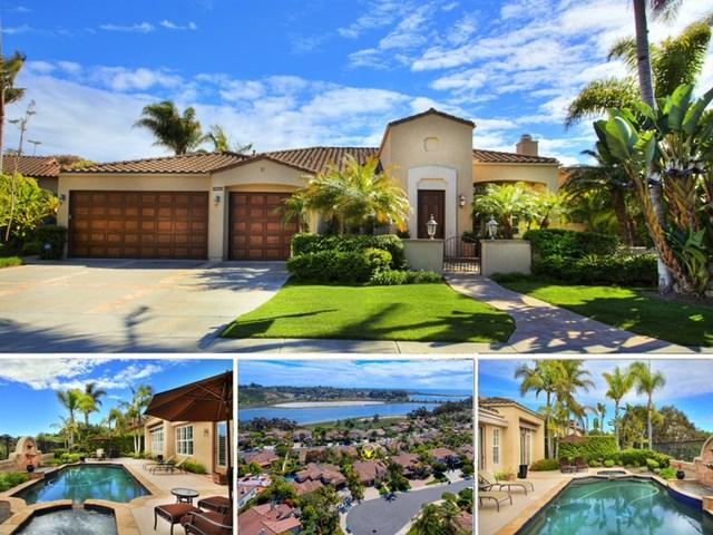 1335 Alcyon Ct, Carlsbad, CA 92011 (#190024865) :: Ardent Real Estate Group, Inc.