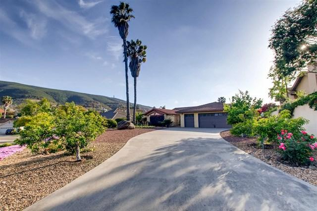 1172 Jugador Ct, San Marcos, CA 92078 (#190025002) :: Fred Sed Group