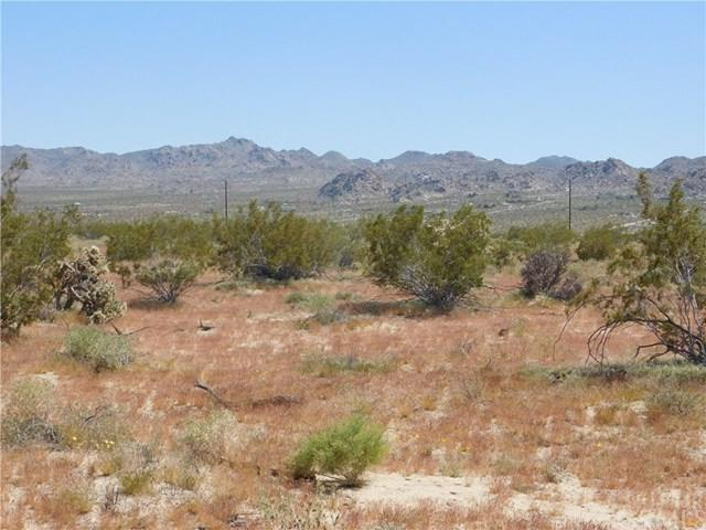 0 Two Mile Drive, Joshua Tree, CA  (#JT19106878) :: Steele Canyon Realty