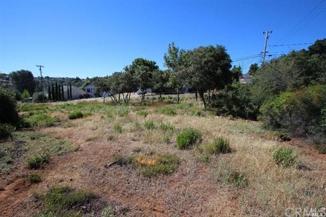 9500 Chippewa, Kelseyville, CA 95451 (#LC19105508) :: Keller Williams Temecula / Riverside / Norco