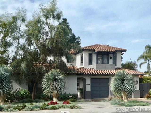 14004 Mercado Drive, Del Mar, CA 92014 (#190025253) :: Fred Sed Group