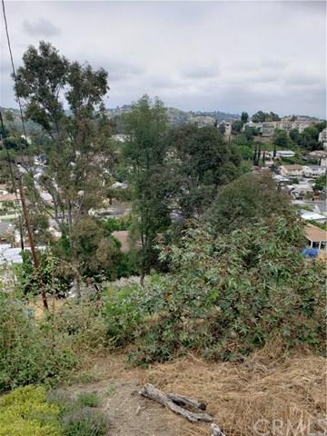 4555 Carter Drive, Los Angeles (City), CA 90032 (#DW19109665) :: Fred Sed Group