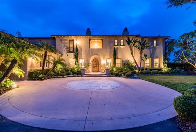 14182 Caminito Vistana, San Diego, CA 92130 (#190025968) :: Abola Real Estate Group