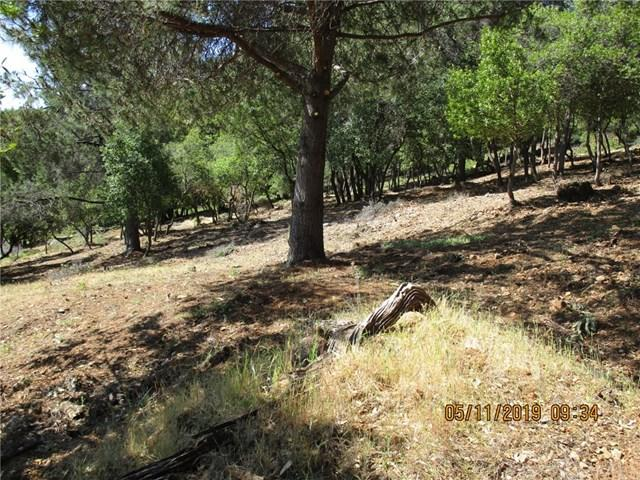 8157 Broadview Drive, Kelseyville, CA 95451 (#LC19110937) :: Fred Sed Group