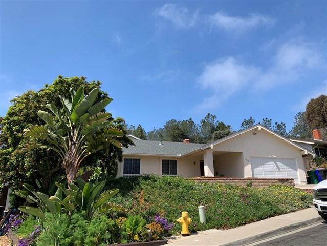 13310 Mango Dr, Del Mar, CA 92014 (#190026030) :: Compass California Inc.
