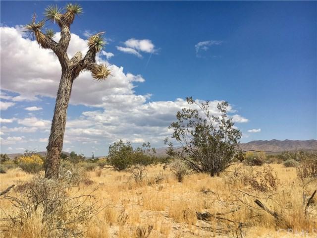 1234 Rice Avenue, Joshua Tree, CA 92252 (#JT19110057) :: Steele Canyon Realty
