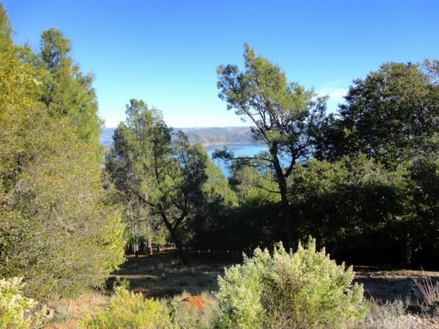 8176 Broadview Drive, Kelseyville, CA 95451 (#LC19112130) :: Fred Sed Group
