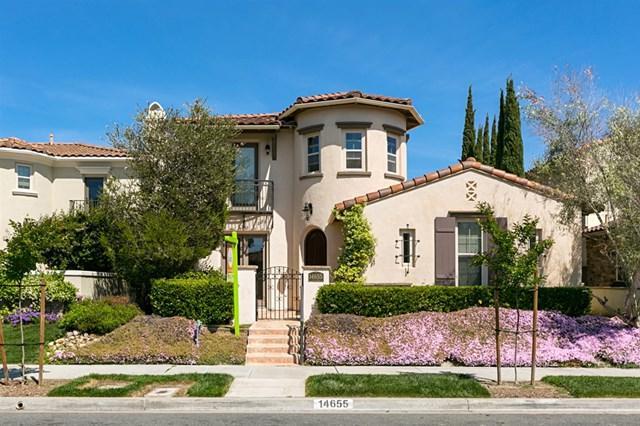 14655 Via Azul, San Diego, CA 92127 (#190026599) :: Fred Sed Group