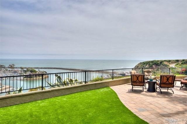 24322 Santa Clara Avenue #4, Dana Point, CA 92629 (#OC19114162) :: Steele Canyon Realty