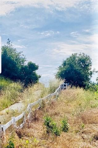 0 Avenida De Arboles, Murrieta, CA  (#SW19114532) :: EXIT Alliance Realty