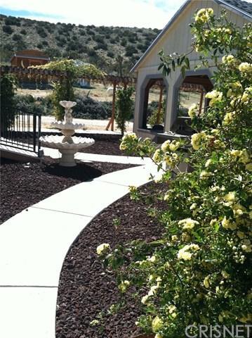 9840 E Avenue W8, Littlerock, CA 93543 (#SR19116133) :: Keller Williams Temecula / Riverside / Norco