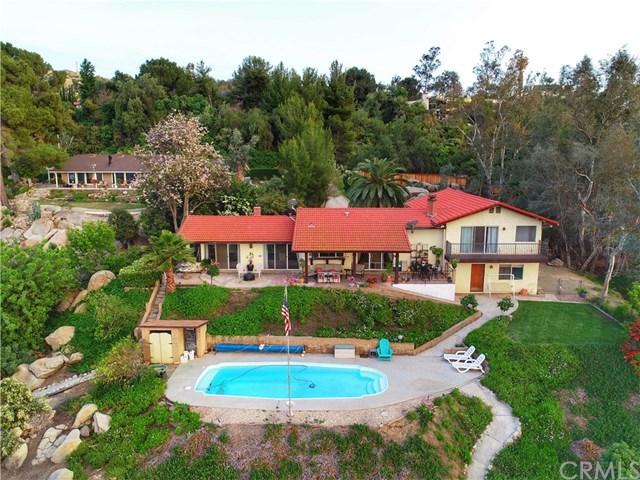 28385 Vista Del Valle, Hemet, CA 92544 (#SW19115225) :: Allison James Estates and Homes