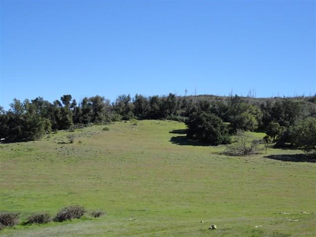 25240 Black Canyon Road, Santa Ysabel, CA 92070 (#190027407) :: J1 Realty Group