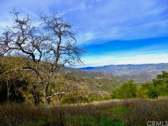 0 Tepusquet Road, Santa Maria, CA 93454 (#PI19116543) :: RE/MAX Parkside Real Estate
