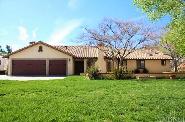 2478 Vista Del Monte Drive, Acton, CA 93510 (#SR19116586) :: RE/MAX Masters
