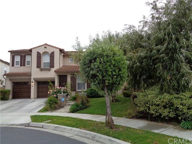 2 Via Ceramica, San Clemente, CA 92673 (#OC19115422) :: Allison James Estates and Homes