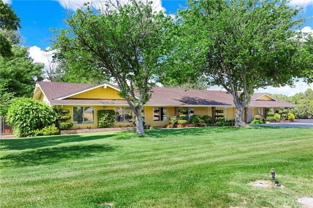 36320 Alamar Mesa Drive, Hemet, CA 92545 (#SW19112341) :: Allison James Estates and Homes