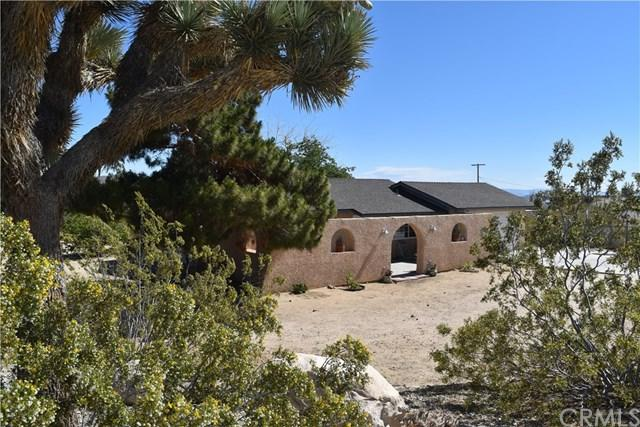 60162 Latham, Joshua Tree, CA 92252 (#JT19116630) :: Steele Canyon Realty
