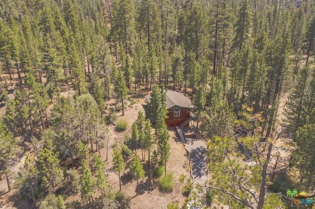 604 W Rose Hill, Big Bear, CA 92314 (#19468566PS) :: Realty ONE Group Empire