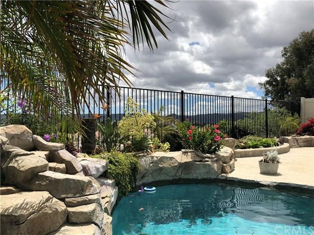 24035 Whistling Swan Road, Murrieta, CA 92562 (#SW19118249) :: Allison James Estates and Homes