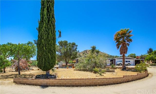 55375 Bunny Road, Yucca Valley, CA 92284 (#JT19118457) :: Team Tami