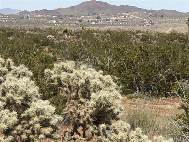 62740 Two Mile Road, Joshua Tree, CA 92252 (#SW19118640) :: Millman Team