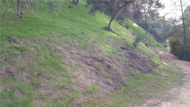 1-B Burson Road, Topanga, CA 90290 (#SR19117524) :: Keller Williams Temecula / Riverside / Norco