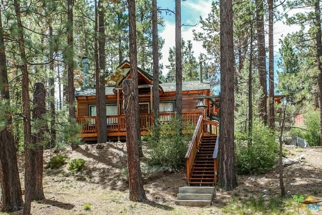 118 W Rainbow, Big Bear, CA 92314 (#19468416PS) :: Realty ONE Group Empire