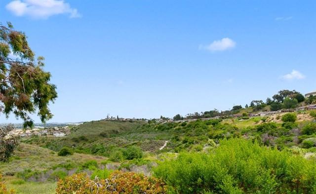 1350 Panorama Ridge Rd., Oceanside, CA 92056 (#190027841) :: Abola Real Estate Group