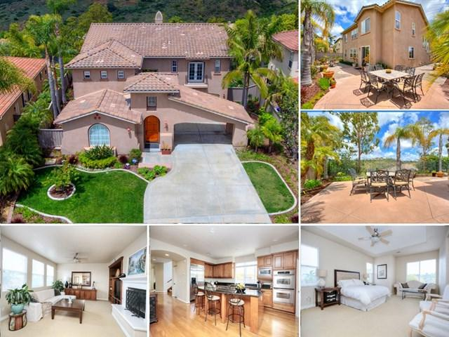 6356 Paseo Cerro, Carlsbad, CA 92009 (#190027868) :: Ardent Real Estate Group, Inc.