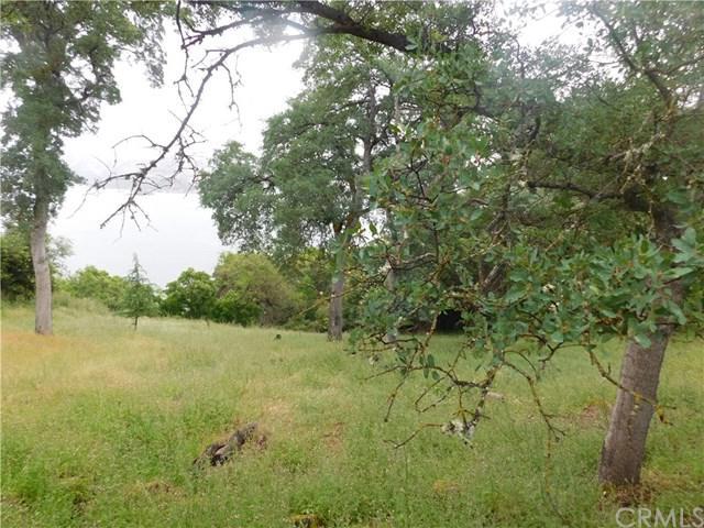 10632 Edgewater Drive, Kelseyville, CA 95451 (#LC19119389) :: Barnett Renderos